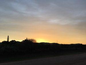 Patensie - Gamtoos Valley